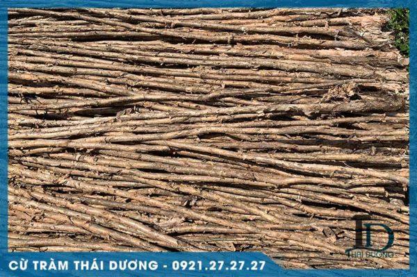 Cừ tràm dài gốc 6-8cm